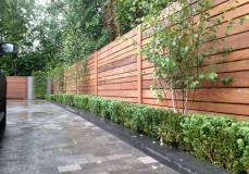 contemporary cedar fence, Indian Sandstone Paving and planting - Balham